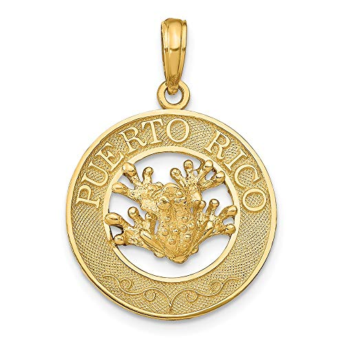 14k Yellow Gold Puerto Rico Frog Pendant Charm Necklace Animal Travel Transportation Fine Jewelry Gifts For Women For - Rico Puerto Frog