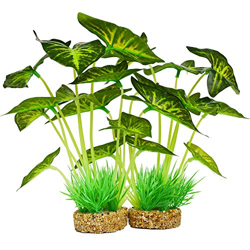 Aquarium Plants Decoration