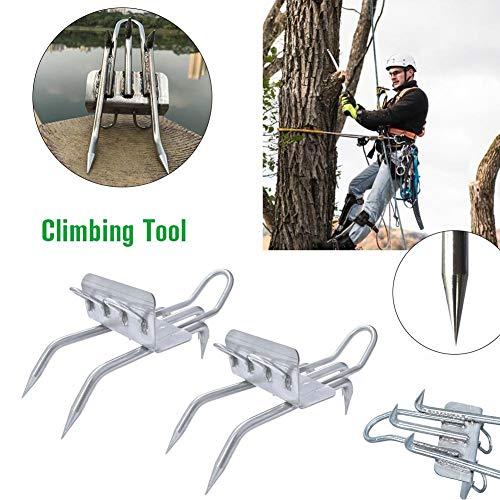 Bestselling Climbing Belay & Rigging