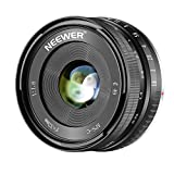 Neewer 32mm F/1.6 Manual Focus Prime Lens Sharp High Aperture, Compatible with Sony E-Mount APS-C Mirrorless Camera Sony A7III,A9,NEX 3,3N,5,NEX 5T,NEX 5R,NEX 6, 7,A5000,A5100,A6000,A6100,A6300,A6500