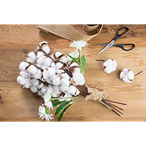 Cotton Stems - Artificial Cotton Flowers, Farmhouse Style Display Vase Filler, Rustic Decorations for Home, Office 3