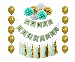 B&D Party Mint Green and Gold Birthday Party Decorations with Happy Birthday Banner Tissue Pom Poms Tassel Garland Balloons Girls Boys 20th 30th 40th 50th 60th (Mint)