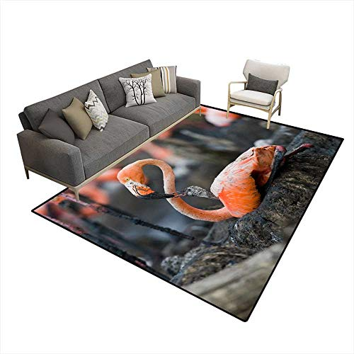 Price comparison product image Kids Carpet Playmat Rug Caribbean Flamingo on a nest with Chicks
