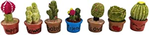 yueton 7pcs Cactus & Flower Pot Plant Miniature Ornament Set for Dollhouse Decor Fairy Garden