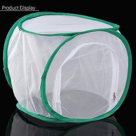 Black 30,5/x 30,5/x 30,5/cm G/én/érique Insectes et Papillon Cage Terrarium Pop-up