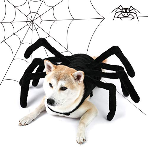 Pet Costume For Dogs (PAWZ Road Dog Spider Costume Halloween Pet Costumes with Furry Spider Legs from Small to Large Size -)