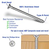 """#8 X 4"""" Stainless Oval Head Phillips Wood Screw"""