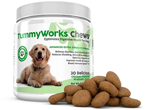 Cheapest TummyWorks Probiotic Chews for Dogs. Best Soft Chews Supplement To Relieve Diarrhea, Yeast Infections, Itching, Skin Allergies & Bad Breath. Boosts Immunity. Added Digestive Enzymes. Made in USA (30) Check this out.