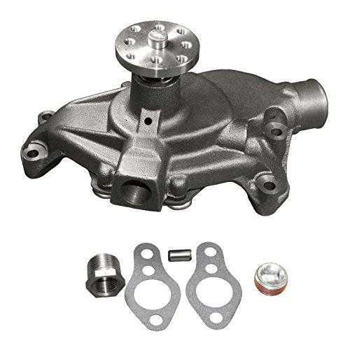 (ACDelco 252-581 Professional Water Pump Kit)