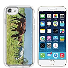 Luxlady Apple iPhone 6/6S Clear case Soft TPU Rubber Silicone Bumper Snap Cases iPhone6/6S IMAGE ID 30717326 Horses in the mountains equine nag hoss hack dobbin a solid hoofed plant eating domesticate