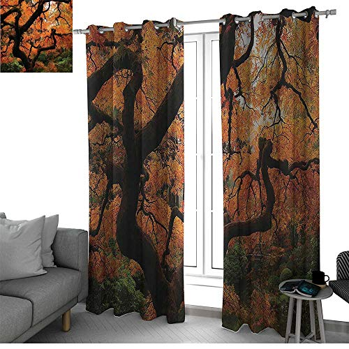 ction Patio door Curtain Panel Home Decoration Vivid Japanese Maple Trees Deep Dark in the Forest Quite Meditative Environment Photo window curtains Orange Brown W96 x L108 Inch ()