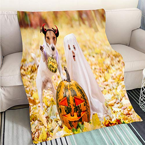 Custom Antibacterial and wear Resistant Blanket Kid and Dog Dressed in Halloween Costumes with Jack o Lantern Pumpkins Perfect for Couch Sofa or Bed Cool -