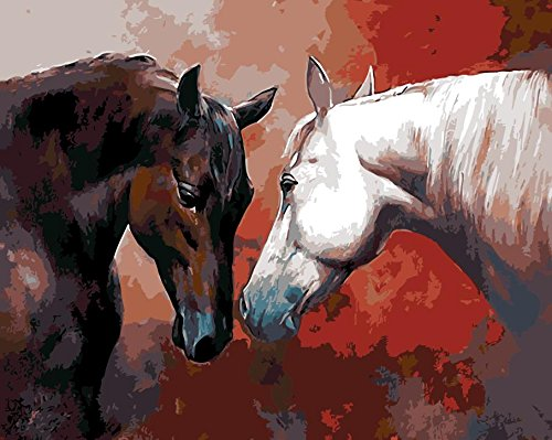 JynXos Wooden Framed Paint By Number Horses Linen Canvas DIY Painting - Couple Horse Friend