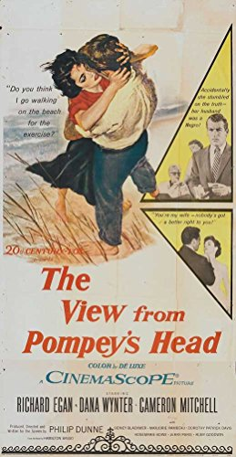 The View from Pompey's Head Poster Movie Insert 14 x 36 Inches - 36cm x 92cm Richard Egan Dana Wynter Cameron Mitchell Sidney Blackmer Marjorie Rambeau (Pompey Movie)