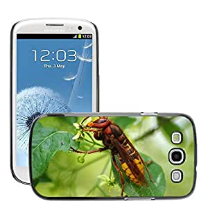 GoGoMobile Slim Protector Hard Shell Cover Case // M00118271 Hornet Insect Nature Toxic Sting // Samsung Galaxy S3 S III SIII i9300