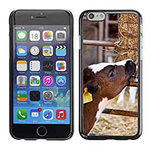 """Hot Style Cell Phone PC Hard Case Cover // M00112494 Agriculture Animal Calf Cattle Cow // Apple iPhone 6 4.7"""""""
