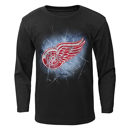 fan products of NHL Detroit Red Wings Boys Encased In Ice Long Sleeve Tee, Large/(7), Black