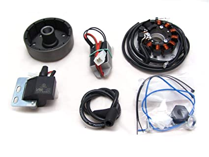 Amazon.com: Powerdynamo VAPE Ignition System Stator Yamaha 1974-81 DT100 DT125 Twin Shock DC: Automotive