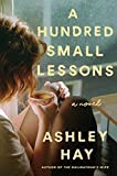 img - for A Hundred Small Lessons: A Novel book / textbook / text book