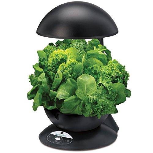 51yLbRNJ2OL - Miracle-Gro AeroGarden Heirloom Salad Greens Seed Pod Kit