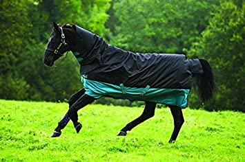 /%/% HORSEWARE Amigo Mio All In One 200g Regendecke mit Halsteil Winterdecke /%/%
