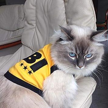 5X-Large Parisian Pet Bitches Love Me Dog T-Shirt