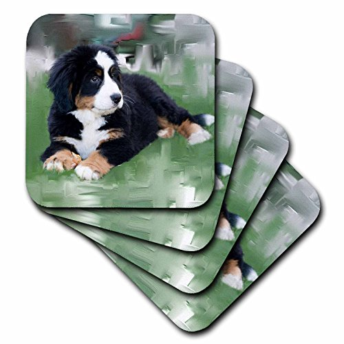 - 3dRose cst_4038_3 Bernese Mountain Dog-Ceramic Tile Coasters, Set of 4