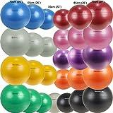 Isokinetics Inc. Brand Exercise Ball - Anti-Burst - 65cm 26