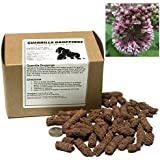 Common Milkweed Guerrilla Droppings - Seed Pellets for Guerrilla Gardening (Asclepias syriaca)