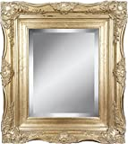 4'' Silver Ornate Baroque French Style Framed Beveled Wall Mirror (16x20 Inch)