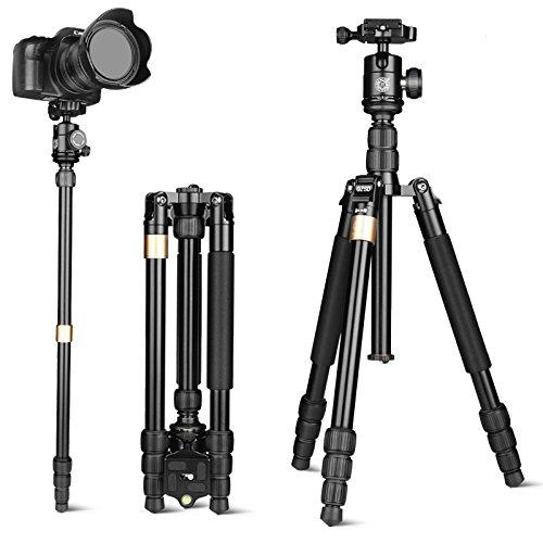【楽天スーパーセール】 QZSD デジタルカメラ ゴールド Canon Nikon Petax Q668S Sonyなど用 ポータブルなマグネシウム B073WT167N アルミ 三脚一脚可変式&ボールヘッド 雲台 ゴールド Q668S B073WT167N, ハイカラン屋:937f6361 --- ballyshannonshow.com