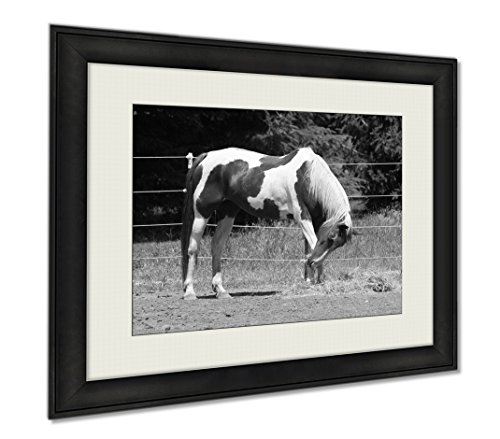 Ashley Framed Prints Big Horse On A Stable In Milwaukee, Wall Art Home Decoration, Black/White, 26x30 (frame size), AG6458467 by Ashley Framed Prints