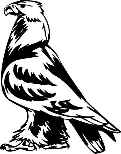 amazon nikdecals decals decal stickers wild west eagle Bird of Prey Ship Plans nikdecals decals decal stickers wild west eagle decoration waterproof racing predatory birds 027