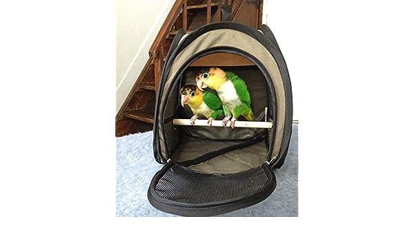 Generic Carrie - Transportín de pájaros portátil y Plegable ...