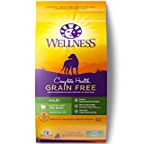 Cheap Wellness Complete Health Natural Grain Free Dry Dog Food, Lamb, 24-Pound Bag