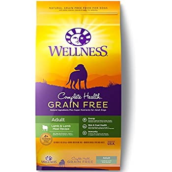 Wellness Complete Health Natural Grain Free Dry Dog Food, Lamb, 24-Pound Bag