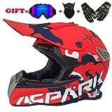 yaning Full Face Dual Sport Helmet Off Road Motocross UTV ATV Motorcycle Enduro Multicolor