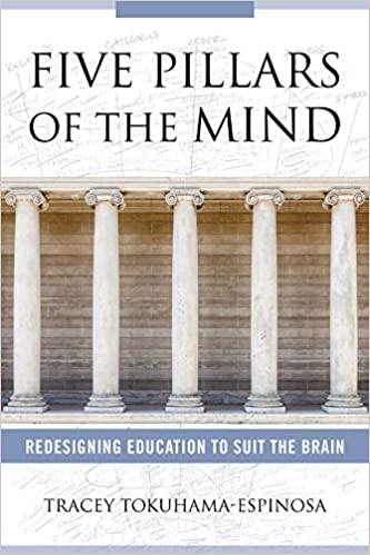 The High Cost Of Neuromyths In Education >> Five Pillars Of The Mind Redesigning Education To Suit The Brain