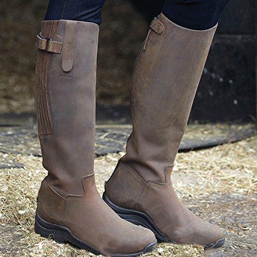 Brown Da Calgary Toggi Stivali Equitazione AIOqBqw
