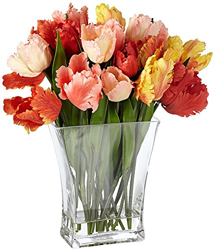 Parrot-Tulip-15-High-Flowers-in-Clear-Glass-Vase
