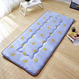 GJFLife Breathable Dormitory Tatami Mattress Futon, Antibacterial Hypoallergenic Mattress Topper Protector Collapsible Bed mats Sleeping pad-E 120x200x5cm