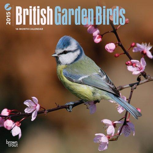 British Garden Birds 2015 Square 12x12 (Multilingual Edition) by