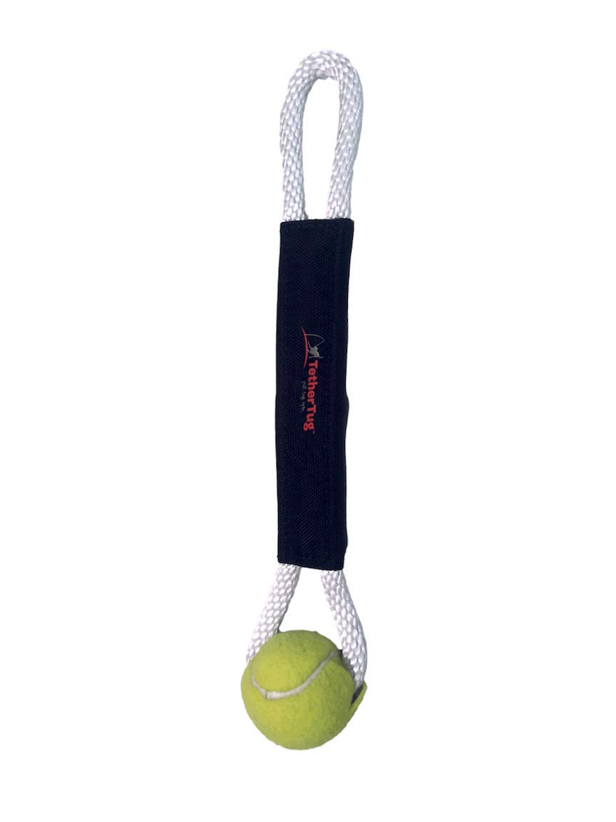 Pet Supplies : Tether Tug Outside Dog Tug Toy - for Medium Dogs (Under 70 lbs.) (Ball Tug Toy) : Amazon.com