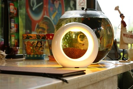 LUNE Mood Light - Alpine White by Cielux