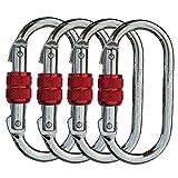 CARAPEAK 25kN Heavy Duty Steel Screwgate Locking 4