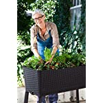 Keter Elevated Garden Bed 17 Dimensions: 44. 9 in. W x 19. 4 in. D x 29. 8 in. H Easy to read water gauge indicates when plants need additional moisture Drainage system that can be opened or closed for full control of watering