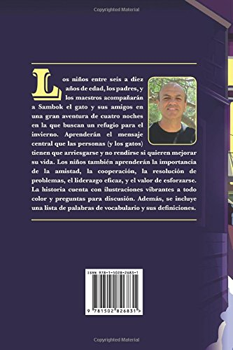 Los gatos callejeros (Spanish Edition): Bob Vavilis: 9781502826831: Amazon.com: Books