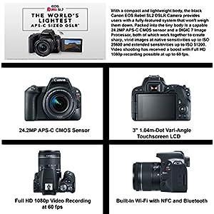 Canon EOS Rebel SL2 DSLR Camera, EF-S 18-55mm STM, Canon EF 75-300mm Telephoto Lens USA (Black) 19PC Professional Bundle Package Deal –SanDisk 64gb SD Card + Canon Shoulder Bag+ More