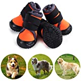 Best Dog Boots - Petilleur Breathable Dog Hiking Shoes for Hot, Ice Review