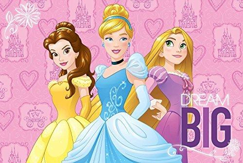 Soft with Non-slip Back Disney Princess Area Rug 54''x 80''